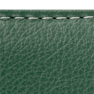 iFolio dark green Stitching