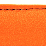 iFolio orange Stitching